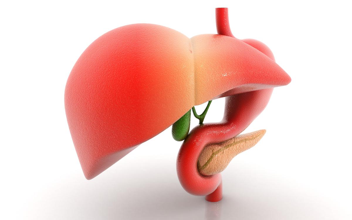 hepatitiscirrosis2