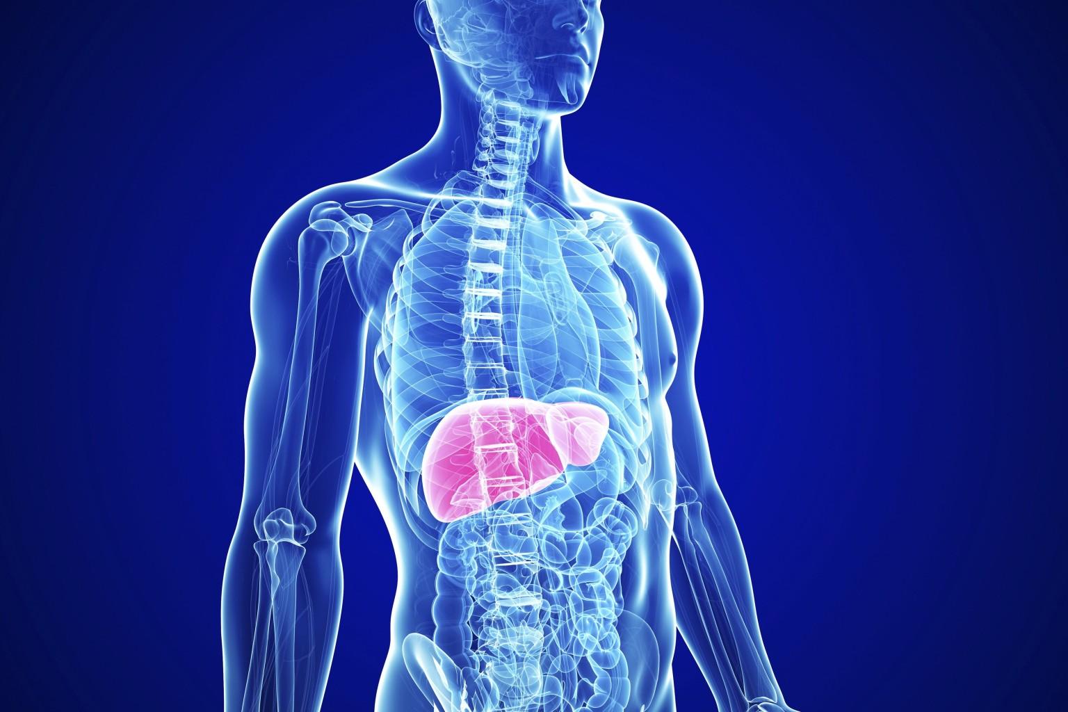 hepatitscirrosis