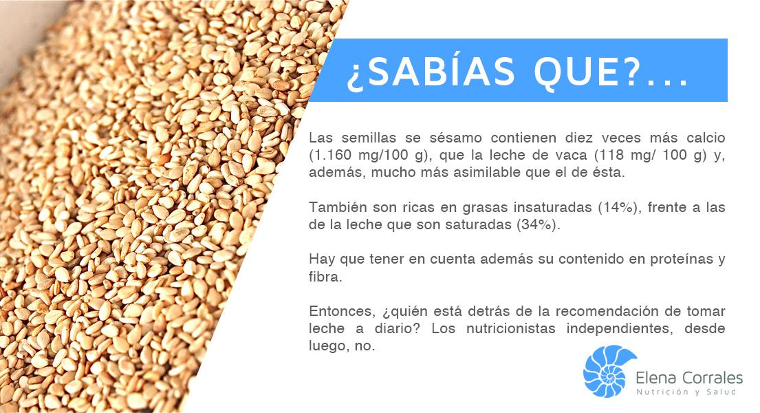 Blog elena corrales nutrici n y salud blog sobre alimentaci n salud y recetas p gina 4 - Alimentos que engordan por la noche ...