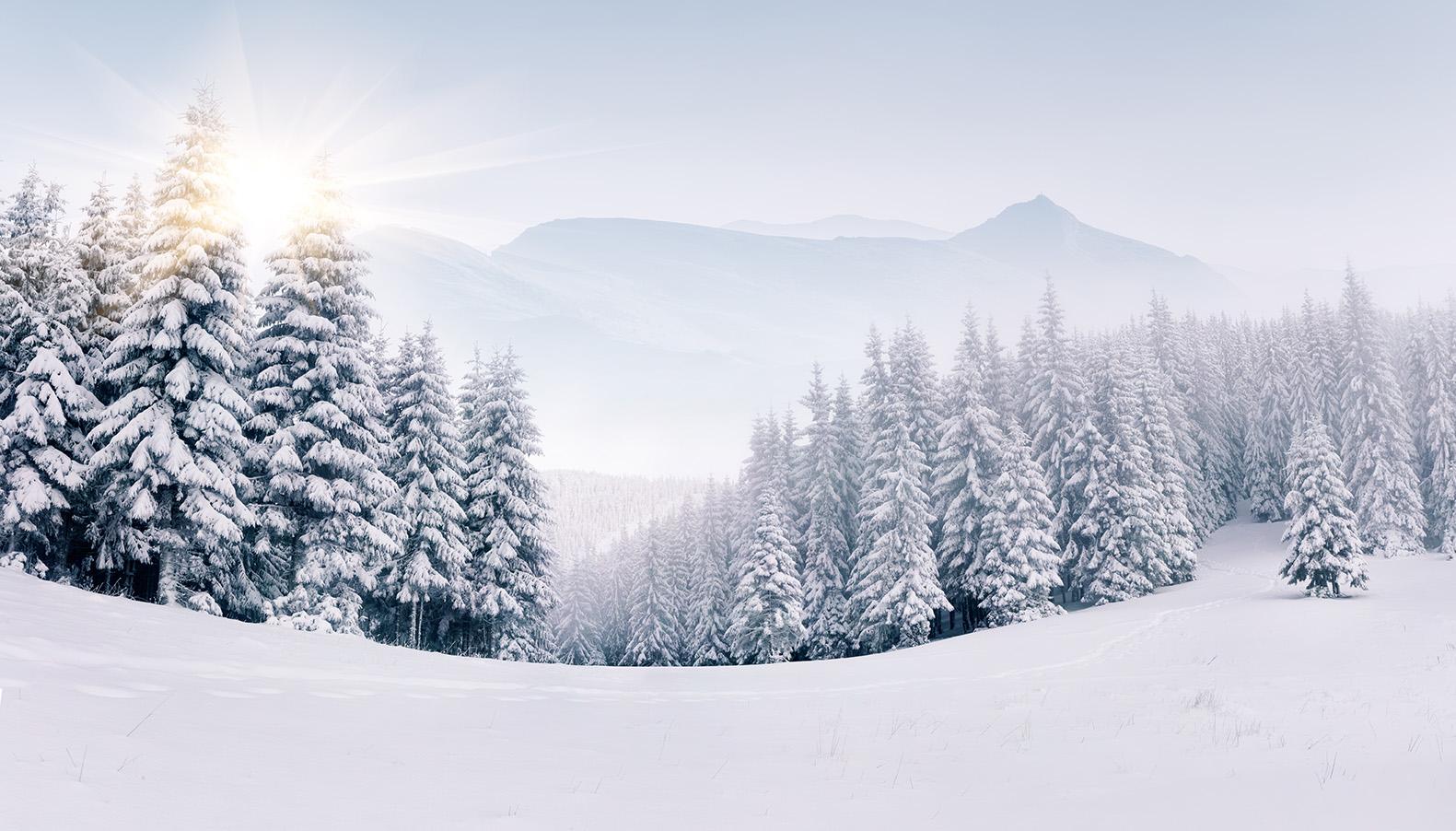 winter-landscape-snow-zima-6037